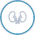 Urologia GCC